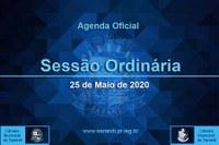 13ª Sessão Ordinária 2020