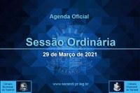 9ª Sessão Ordinária 2021 - 29/03/2021